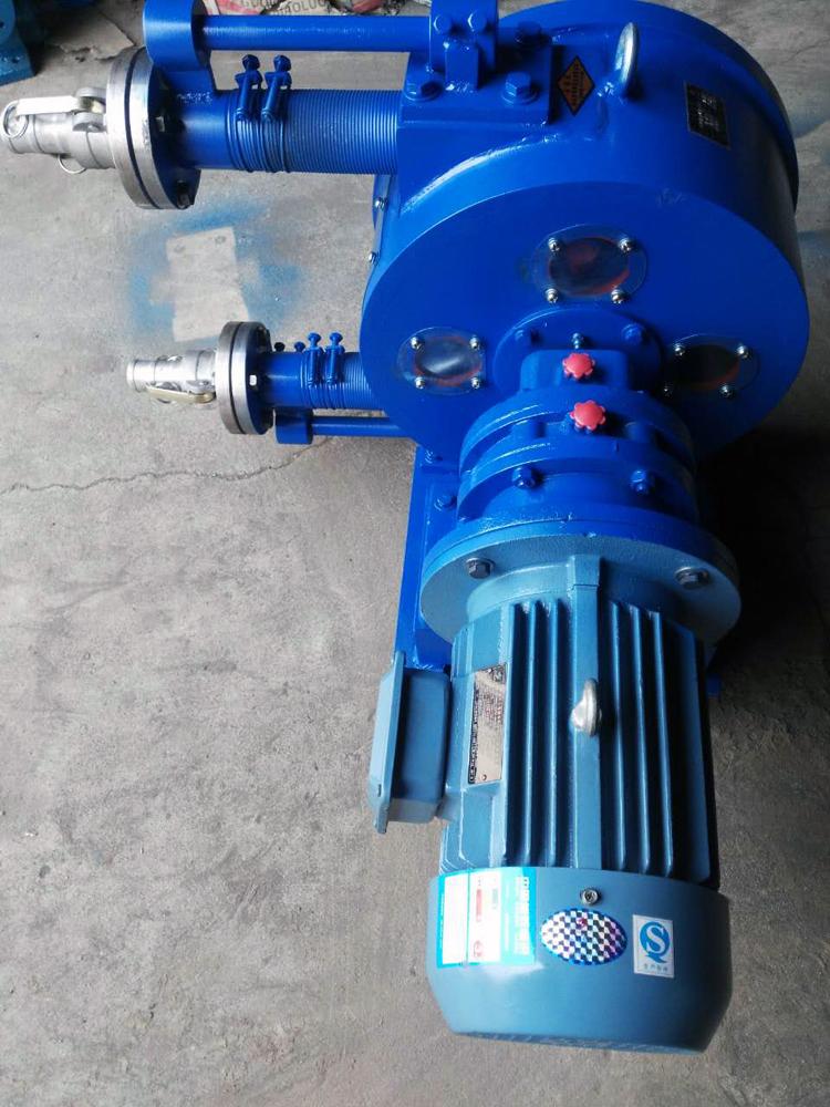 Solid Particles Hose Pump