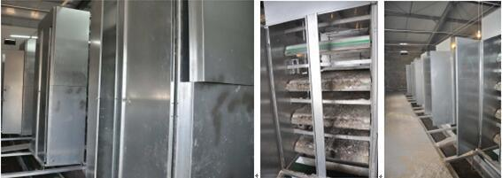H Frame Battery Cage for Layer Farm