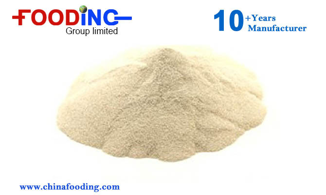 China Supplier Oil Drilling Grade Xanthan Gum