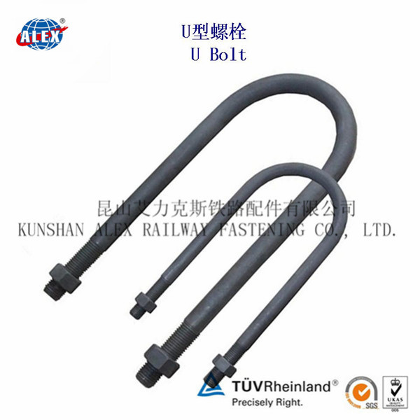 Special Fastener U Anchor Bolt with HDG Surface