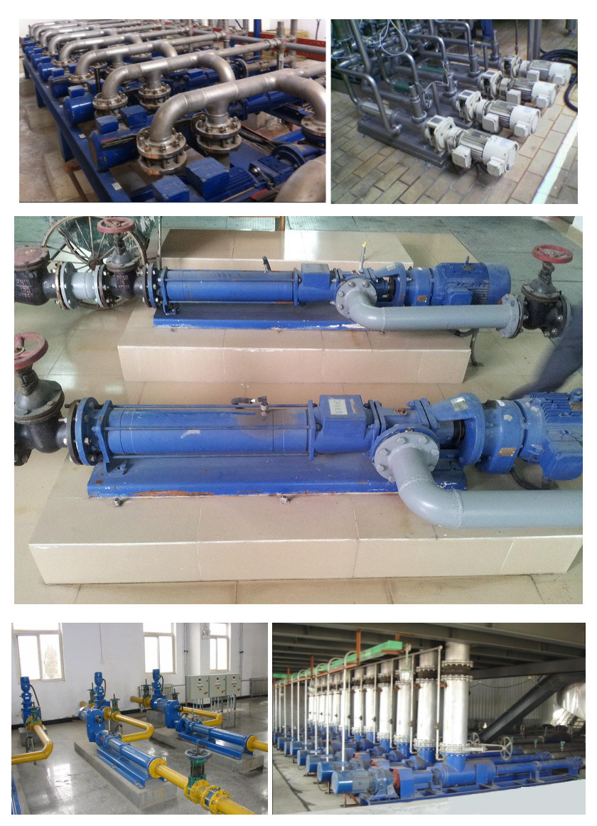G Type Mono Screw Pump Positive Displacement Pump