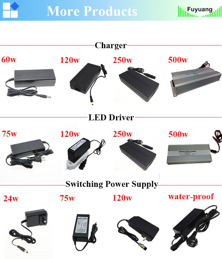 5 Cell Lithium Battery Pack 21V 3A Battery Charger with Certificate