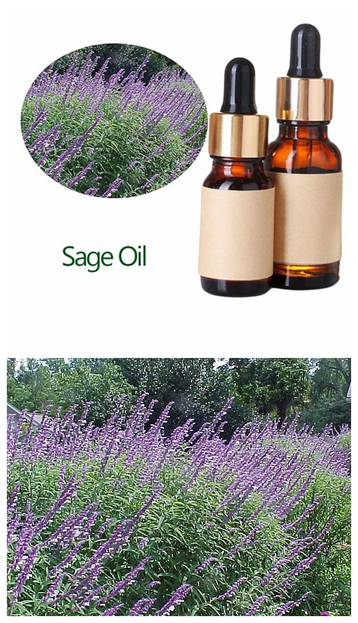 Clary Sage single essential oil OEM
