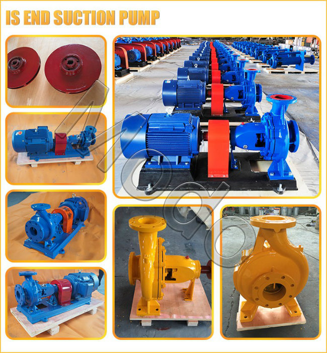 2900rpm 45kw Clean Water End Suction Pumps