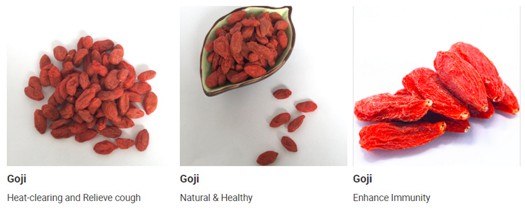 Goji Wolfberry Pesticide Free