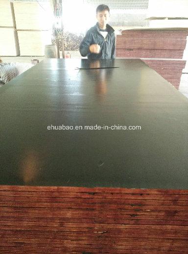 Poplar Core Film Faced Plywood WBP Glue First Grade (HB0907)