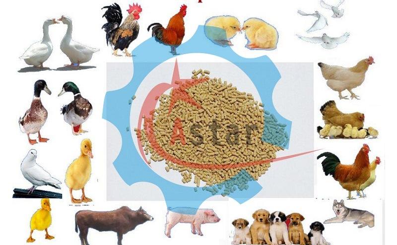 Homemade Farm Small Animal Feed Granulating Machine