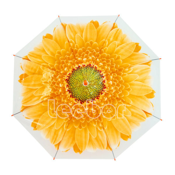 Flower Printed Straight Outdoor Cheap Clear Rain Poe/Transparent Umbrella