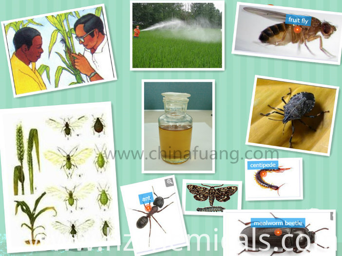 Agrochemicals Insecticide Pesticide Acaricide, Spirodiclofen
