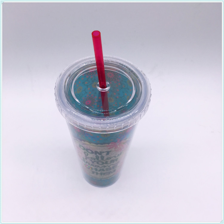 680ml Double PS Body Plastic Coffee Cup with Straw (SH-PM10)