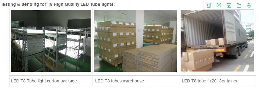 DC12V Emergencyled T8 Tube Light with Ce & RoHS Certificates