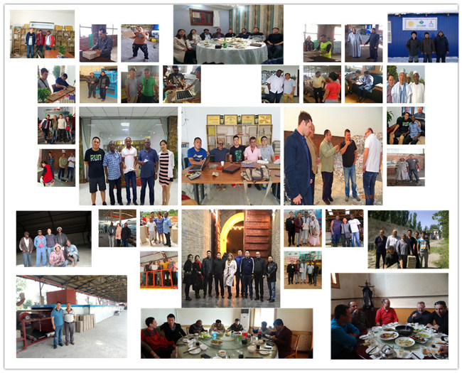 High Performance Paper Plate Machine/ Egg Tray Manufacturing machinery