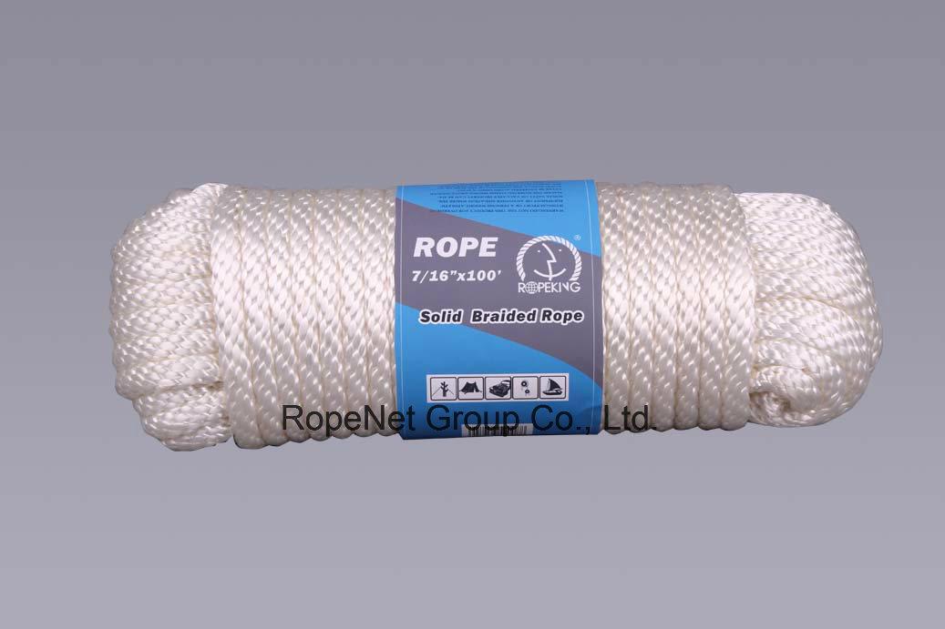 Mfpp Derby Halter-Lead Rope PP Mulit. Sash Rope