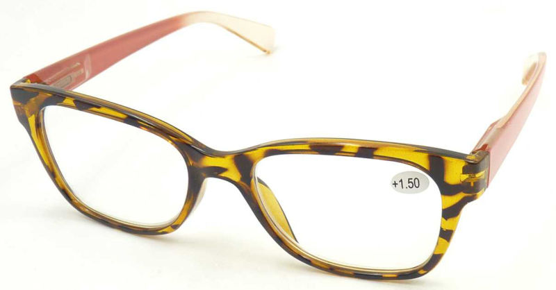 R17038 Wholesale Cheap Reading Glasses, Wenzhou Factory PC Reading Glass