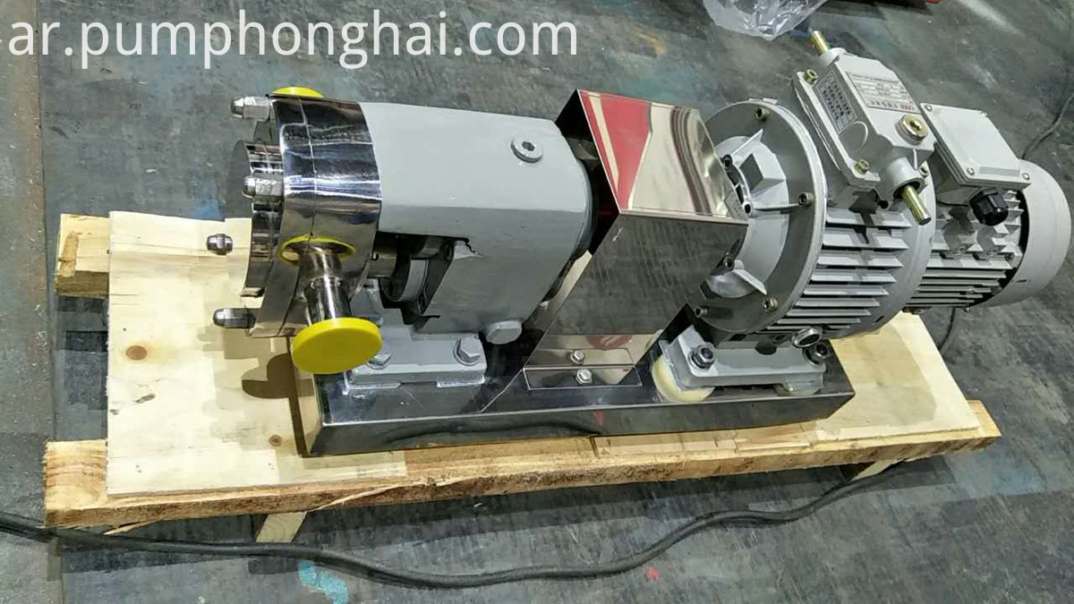 Stainless Steel 304 Food Grade Liquid Pump