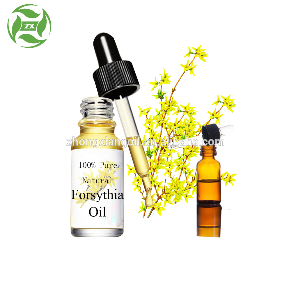 forsythia oil