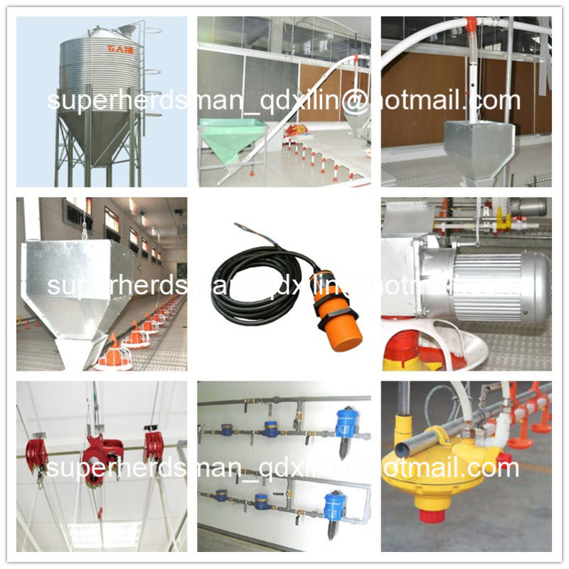 Full Set Automatic High Quality Poultry Equipment for Broiler