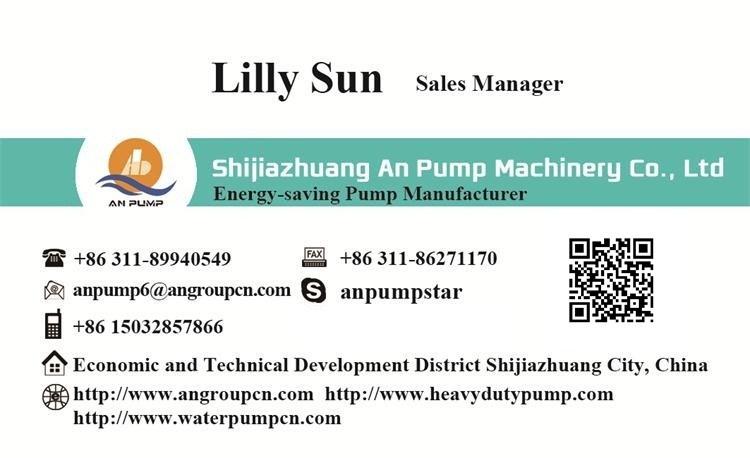 Salt Sea Water Farm Irrigation Pump