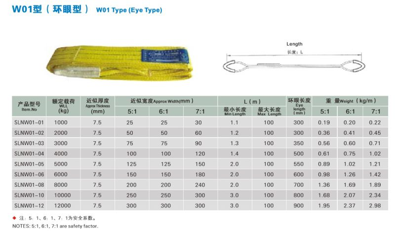 100% Polyester Webbing Sling Lifting Webbing Belt 3t