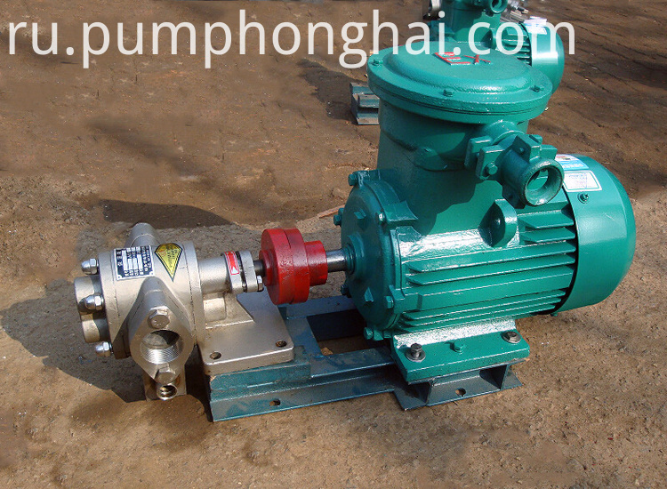 Edible Oil Pump