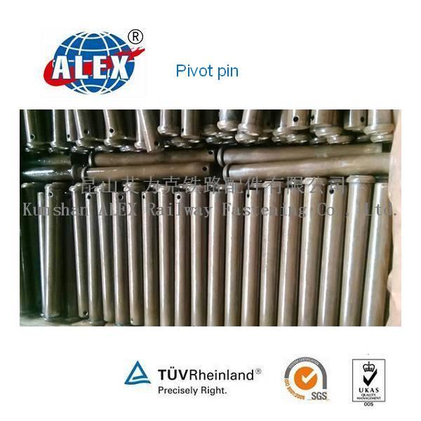 AISI C1060 Plain Oiled Pivot Pin