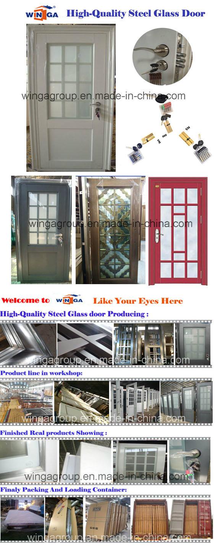 Popular Art Design Hot Sell Steel Glass Door (W-GD-06)