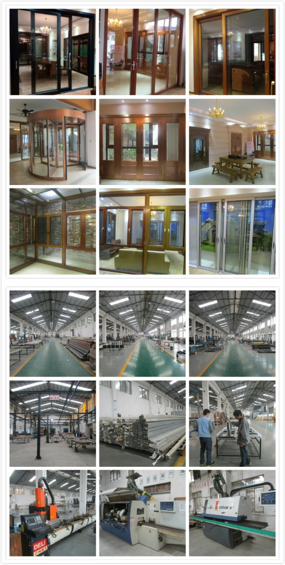 Double Tempered Glass Aluminum Sliding Window with SS Screen