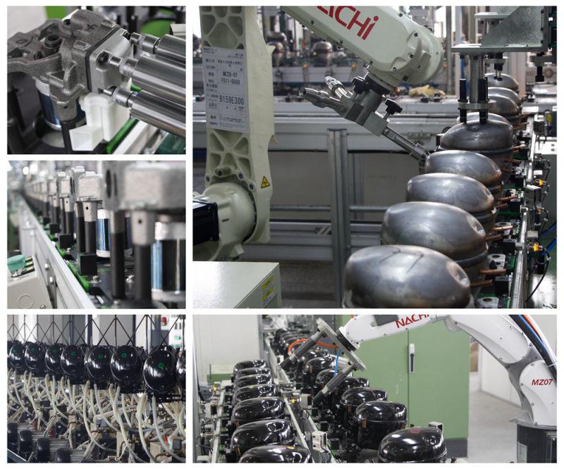 12V 24V DC Compressor Qdzh30g R134A Lbp Mbp