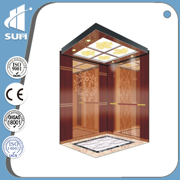 Machine Roomless Home Elevator of Etching Mirror Stainless Steel