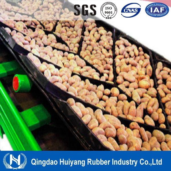 High Quality Cotton Canvans Chevron Conveyor Belt for Fine Coal&Grains