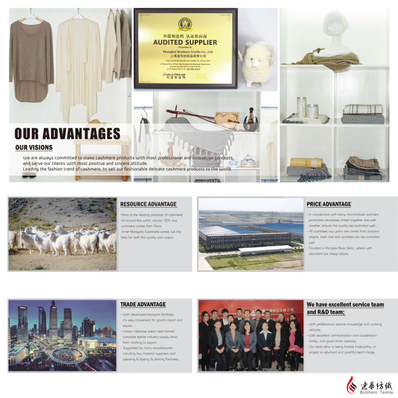 Men's Fashion Cashmere Sweate 17brpv076