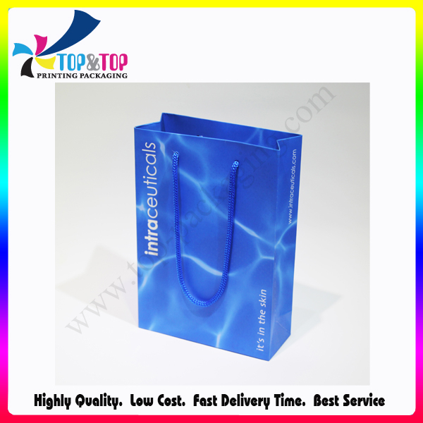 Pantone Color Printing Wholesale Foldable Luxury Shopping Paper Bag