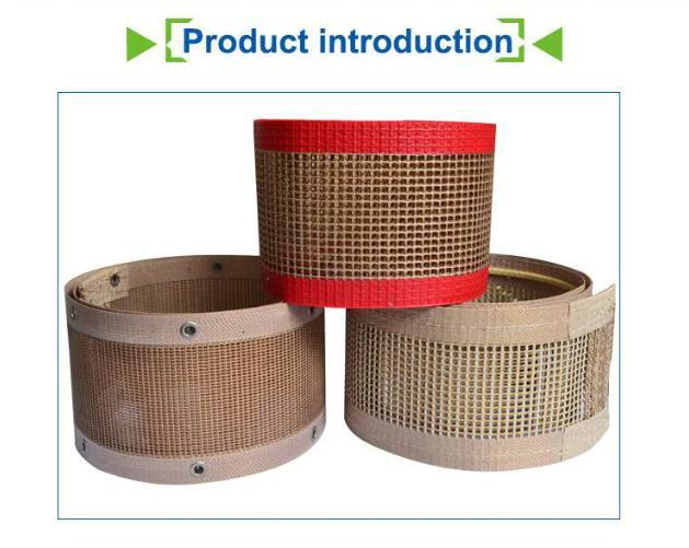 Heat Resistant 10*10mm Teflon Mesh Belt