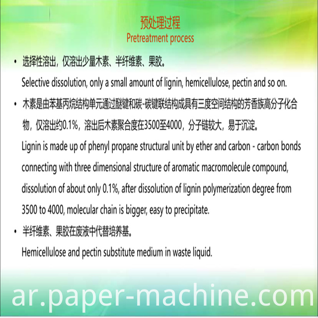 Bagasse Pulp Making System