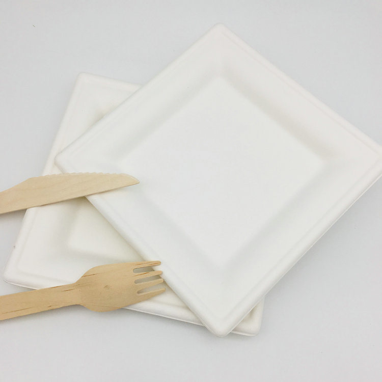 Paper Plate 100% Biodegradable Disposable Rectangle Plate for Christmas Party