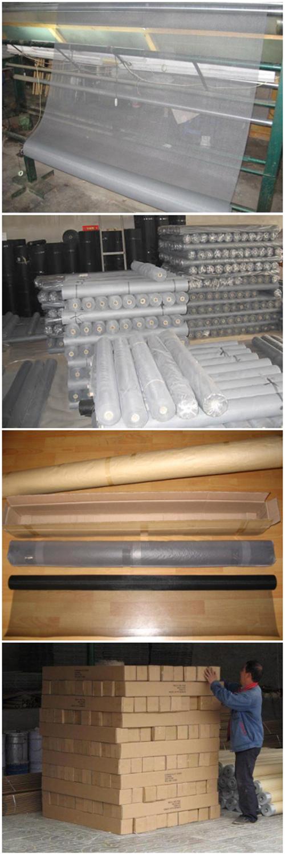 China Wholesale 16*16 Mesh Fiberglass Screen Netting (ZDFSN)