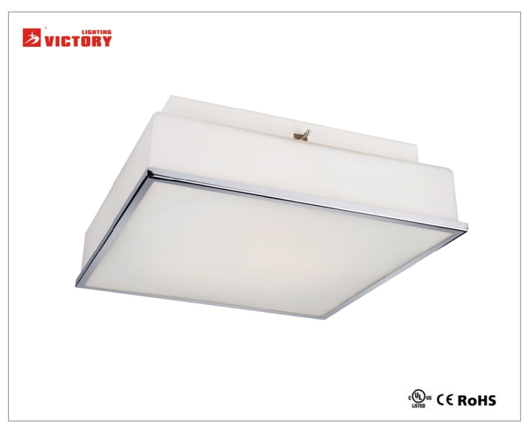 2018 Modern Square Casting Glass LED Ceiling Light