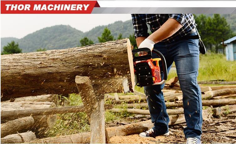 52cc 5202 Newest Design Reasonable Price Petrol Chainsaw Price in India