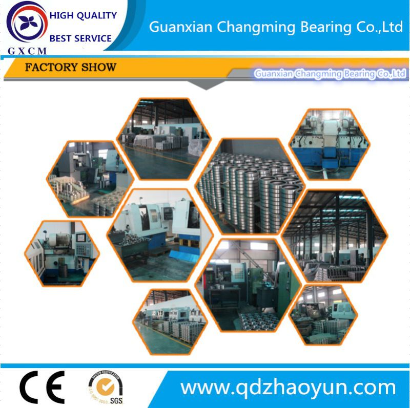 Bulk Buy From China Deep Groove Ball Bearing 6000 Series 6200 Series 6300 Series Ball Bearing with Open 2RS Zz C3 C0 Ball