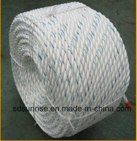 Premium Quality Polyester Mixed PP Ropes for USA Market
