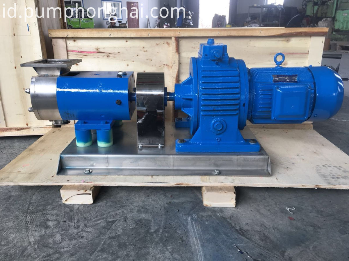 rotary lobe transfer pump