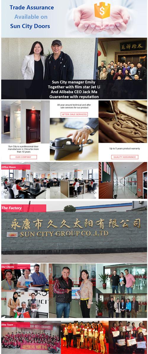 PVC Surface Economic Interior Door