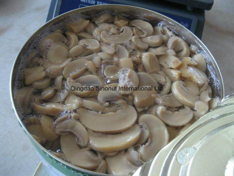 2016 Chinese Canned Mushroom