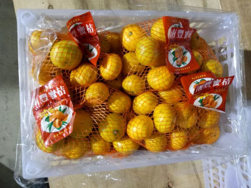 Exporting Quality Standard of Fresh Baby Mandarin