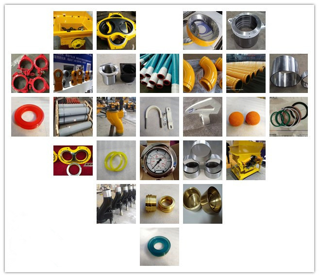 China Made Concrete Pump Parts for Putzmeister/Zoomlion/Sany S Valve