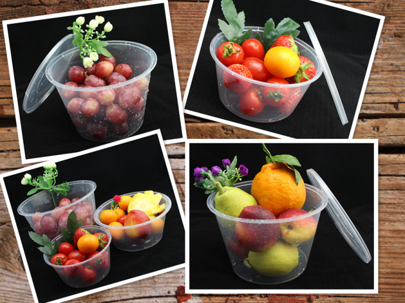 Wholesale High Insurance Heat Resistant Round PP Microwave Safe Food Container with Lid