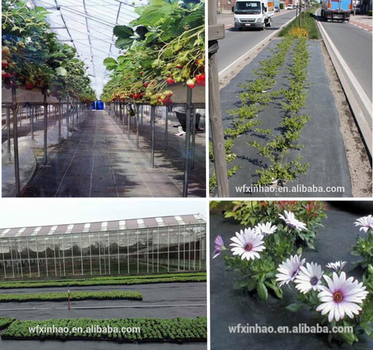 PP Woven Gardening Cover/Gardencover/Weedmat
