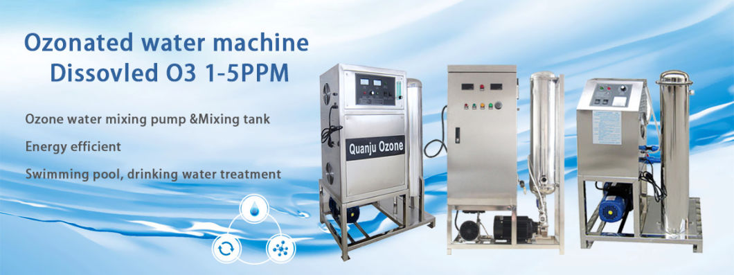 20g/H High Concentration Ozone Water Treatment Systems for Sale
