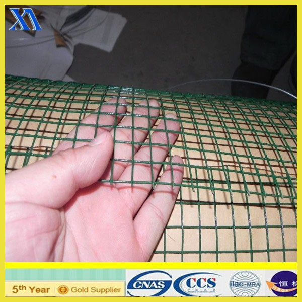 PVC Coated and Galvanzied Welded Wire Mesh (XA-417)