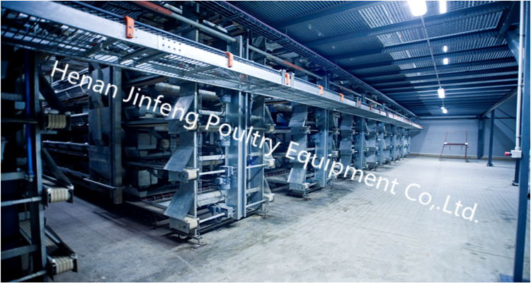 Standard Steel Wire Chicken Egg Cage/ Poultry Farm Equipment
